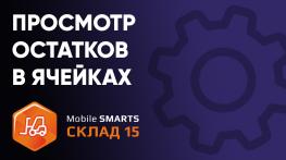 Просмотр остатков в ячейках на ТСД в «Mobile SMARTS: Склад 15»