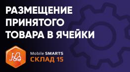 Размещение принятого товара в ячейки на ТСД в ПО «Mobile SMARTS: Склад 15»